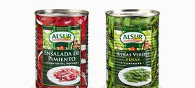 Acon y Quarza Inversiones se hacen con el control de Alsur