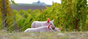 Costa Food Meat adquiere unas nuevas instalaciones, donde la logística cobra más importancia