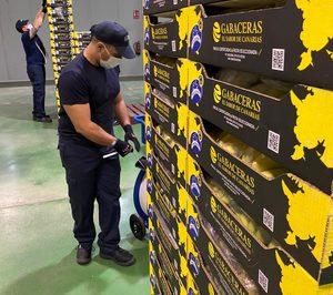 Europlátano abarca toda la cadena de suministro tras aliarse con Bonnysa