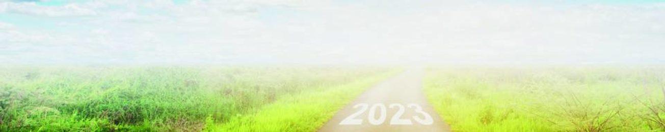 Termómetro Empresarial Los rebrotes enfrían las perspectivas de crecimiento para 2021