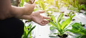La innovación fija el punto de inflexión en la producción hortofrutícola