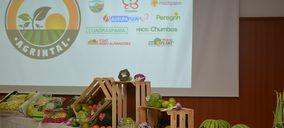 Nace Agrintal, la asociación que defiende los intereses de empresas hortofrutícolas de Almería