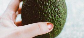 Agroatlas diversifica con aguacate, mientras cierra ejercicio con un incremento del 37%