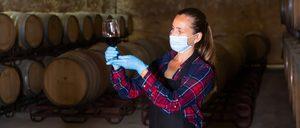 Informe 2020 del Sector del Vino en España
