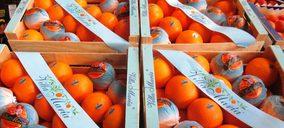 Fefpeb prevé un incremento de los precios de la madera en este último trimestre
