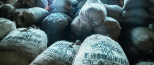 Informe 2020 del sector de chocolates industriales en España