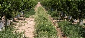 La mejora de la biodiversidad impulsa la rentabilidad en El Ciruelo