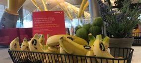 Iberia ofrece Plátano de Canarias en el catering de sus vuelos