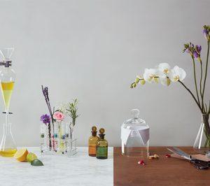 Fuerte crecimiento en las ventas de Cosmo International Fragrances, un año después de la absorción de Cosmo Fragrances