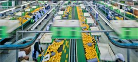 GPF Capital adquiere Frugarva para liderar la producción de limón europea