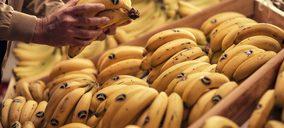 Plátano de Canarias se alía con Glovo para acercar la frutería de barrio al consumidor