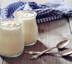 Indukern desarrolla una solución para elaborar yogures veganos