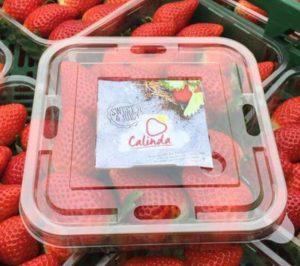 Special Fruit incrementa hasta las 5.500 t la producción de Calinda