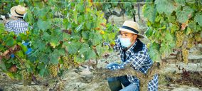 ¿Cuáles son las principales tendencias del vino en la era Covid?