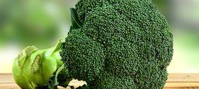 Ingredalia, la startup en la que invierte Grupo Virto que quiere multiplicar los beneficios del brócoli