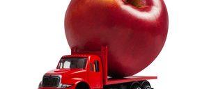 Informe 2021 sobre Transporte Hortofrutícola