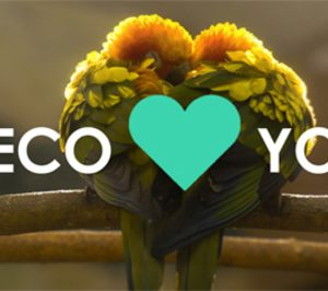 Naeco presenta Naeco Loves You