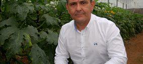 Grupo Agroponiente amplía su superficie de cultivo ecológico