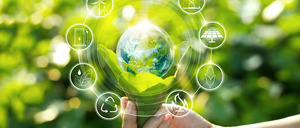 Informe 2021 sobre Innovación en No Alimentación