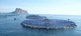 Grupo Andrómeda inicia nueva etapa como Avramar y líder europeo en acuicultura