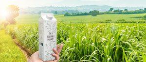 Informe 2021 de Innovación y Sostenibilidad en el Packaging