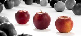 VOG y VIP presentan las nuevas manzanas Giga, Cosmic Crisp y RedPop