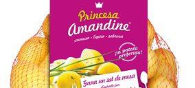 Princesa Amandine avanza posiciones en el mercado español y portugués