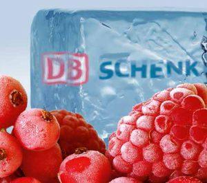 DB Schenker presenta un servicio reefer para frescos y congelados