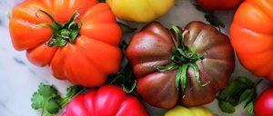 El tomate busca la rentabilidad por medio del sabor