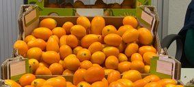 Agroponiente avanza en tropicales: nueva marca y ampliación de gama