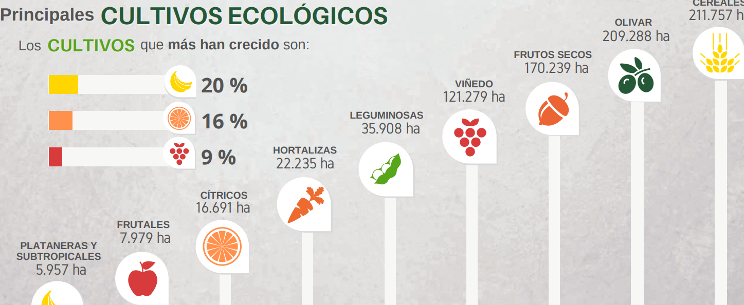 Luces y sombras en el sector de alimentación ecológica