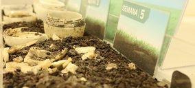 Itene certificada para realizar ensayos de compostabilidad Home