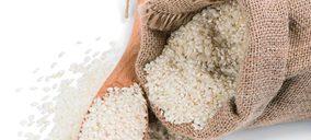 El arroz redondo revive crecimientos por la pandemia