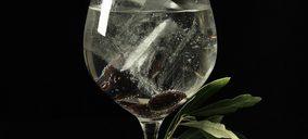Destilados Prémium: Claves y tendencias de un segmento en auge