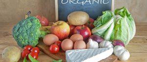 Informe 2021 sobre alimentación ecológica