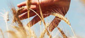 La estadounidense Arcadia compra Agrasys, la desarrolladora del cereal Tritordeum