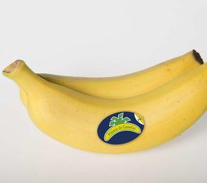 Plátano de Canarias incorpora información nutricional a su etiquetado