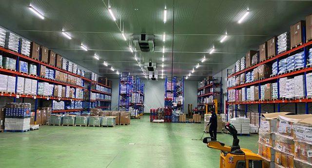 Informe 2021 del sector de logística y grupaje frigoríficos en España