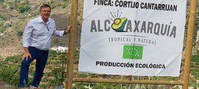 Junto al aguacate, los cítricos se hacen un hueco en las inversiones de Alcoaxarquía
