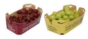 Alcampo incorpora packaging más sostenible para el envasado de uva
