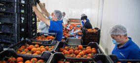 Los gazpachos y cremas frías acusan una reducción cercana al 3% en ventas