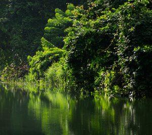Huhtamaki participa en una tecnología para abordar los desechos fluviales flotantes