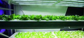 La Innovación, driver para la rentabilidad y el consumo de frutas y hortalizas