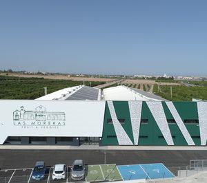 TM Grupo Inmobiliario inicia la venta de cítricos con su marca 'Las Moreras Fruit & Veggies'