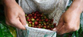 El café de comercio justo duplica sus ventas en el último lustro