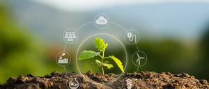 Termómetro Sostenibilidad 2021