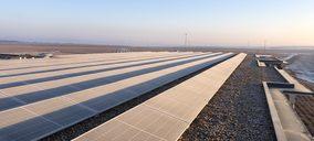 González Byass invierte en diez parques solares en sus bodegas de España y México